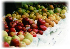 local organic initiative